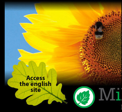 Access the english site
